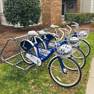Bell Meadowmont Cruiser Bikes